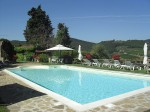 Vacation apartments for 2 to 6 persons near Greve in Chianti, Tuscany