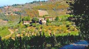 Poggio all'Olmo Tuscan Holiday Home