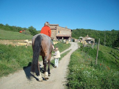 Vacation on a Tuscan farm