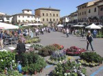 Greve in Chianti main piazza during the flower festival in May